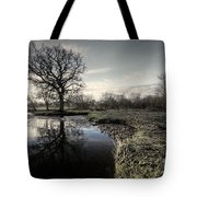 Winter Tree On The River Culm Tote Bag