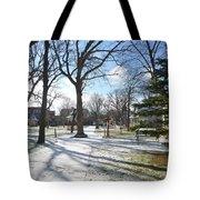 Winter Tree Shadows Tote Bag