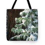 Winter Tree Sierra Nevada Mts Ca Usa Tote Bag