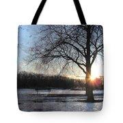 Winter Tree Sunset Tote Bag