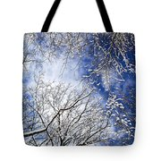 Winter Trees And Blue Sky Tote Bag
