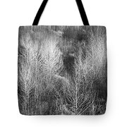 Winter Trees  B And W 1 Tote Bag