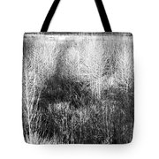 Winter Trees B And W 5 Tote Bag