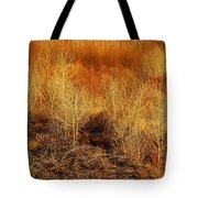 Winter Trees Color 3 Tote Bag