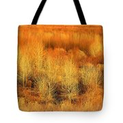 Winter Trees Color  7 Tote Bag
