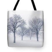 Winter Trees In Fog Tote Bag by Elena Elisseeva
