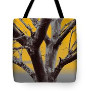 Winter Trees In Yellow Gray Mist 2 Tote Bag