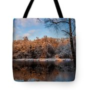 Winter Trees Lake Reflected Tote Bag