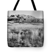 Winter Trees Landscape Tote Bag