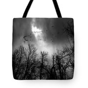 Winter Trees Moving Sky Tote Bag