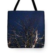 Winter Treetop Tote Bag
