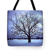 Winter Twilight Tree Tote Bag