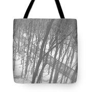 Winter Urban Wood Tote Bag