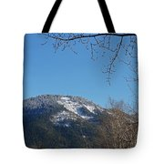 Winter Vista From Grants Pass Tote Bag