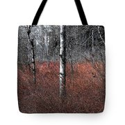 Winter Wetland I Tote Bag