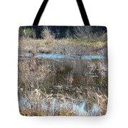 Winter Wetlands Of Alabama Tote Bag