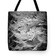 Snowy Boughs Tote Bag