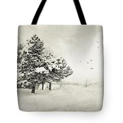 Winter White Tote Bag by Julie Palencia