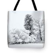 Winter White Tote Bag