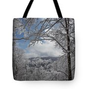 Winter Window Wonder Tote Bag