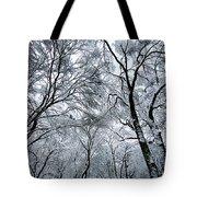 Winter Wonder Tote Bag