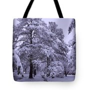 Winter Wonderland 3 Tote Bag by Mike McGlothlen