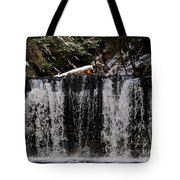 Winter Woodland Waterfall Tote Bag