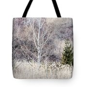 Winter Woodland With Subdued Colors Tote Bag