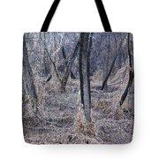 Winter Woods In Missouri 1 Tote Bag
