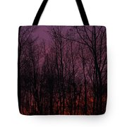 Winter Woods Sunset Tote Bag