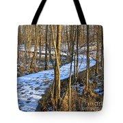 Winter Woods Walk Tote Bag