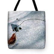 Winter Wren Tote Bag