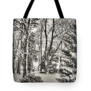 Winter Zauber 03 Tote Bag