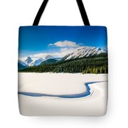 Winters Calm Tote Bag