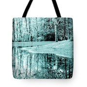 Winter's First Snowfall Tote Bag