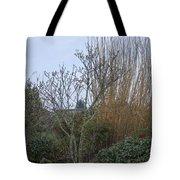 Winters Garden In Seattle  Tote Bag