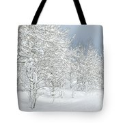 Winter's Glory - Grand Tetons Tote Bag by Sandra Bronstein
