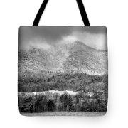 Winters Grace Tote Bag