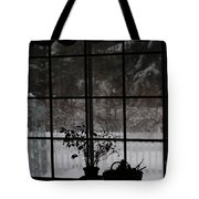 Winters Reflection Tote Bag