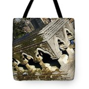 Winter's Snow Is Almost Gone Tote Bag