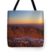 Winter's Splendor Tote Bag by Heidi Smith