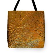 Winters Touch 2 Tote Bag