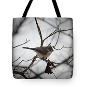 Winter's Tufted Titmouse Tote Bag