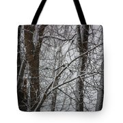 Wintery Day Tote Bag