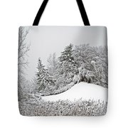Wintery Fun Tote Bag