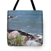 Winthrop Water Tote Bag