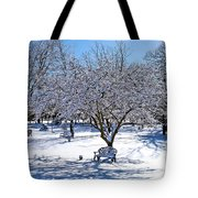 Wintry Day At The Park Tote Bag