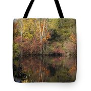 Wisconsin Beauty Tote Bag