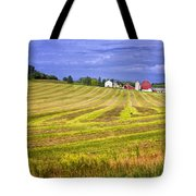 Wisconsin Dawn Tote Bag by Joan Carroll