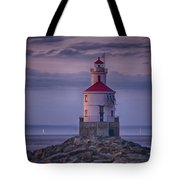Wisconsin Point  Tote Bag